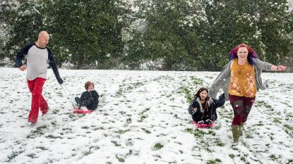 Nu al sneeuwpret in Montana