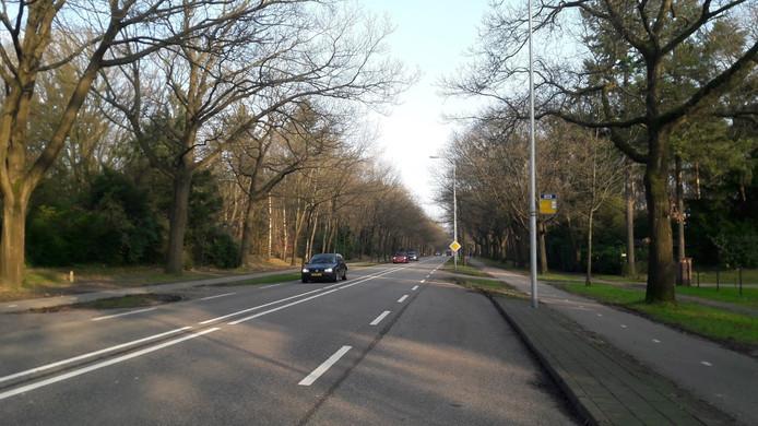 De N237 tussen Amersfoort en Soesterberg.