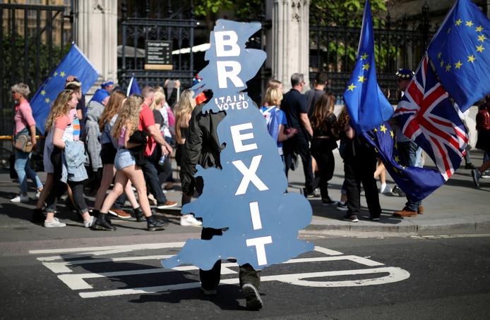 Manifestation pro-Brexit devant le Parlement, à Londres.