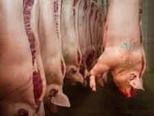 Hoogvliet en Plus halen vlees terug om salmonella