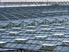 Tuinbouwriolering en CO2-leiding kunnen slechts op paar plaatsen samen de grond in