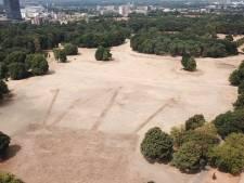 Goffertpark in Nijmegen flink aangetast door droogte