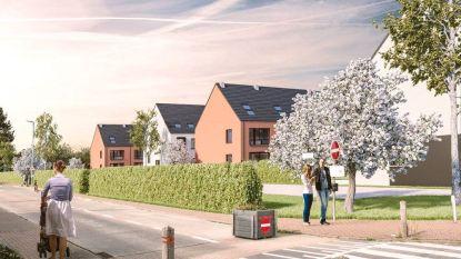 31 duurzame en compacte woningen met elk een privétuin: dit wordt de nieuwe woonwijk 'Veltem Village'