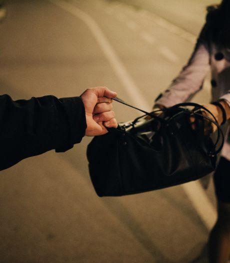 Verdachte van beroving op straat in Oss snel aangehouden
