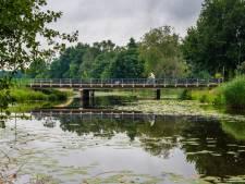 Graafse Raam wordt dankzij miljoeneninvestering luilekkerland voor kikkers en padden
