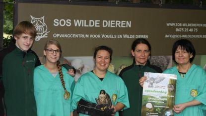 Op bezoek bij SOS Wilde Dieren