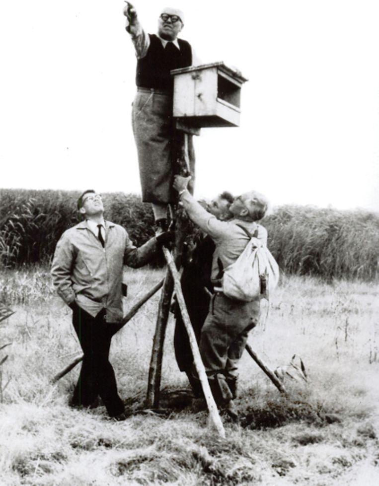 Van Eesteren uitkijkend over toekomstig Lelystad, 1964. Beeld Van Eesterenmuseum