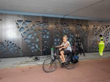 Kunstwerk versiert viaduct aan de Schiedamse Parkweg, panelen geven licht in het donker