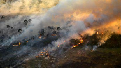 """Verwoestende brand vernielde in 2011 zo'n 500 hectare op Kalmthoutse Heide: """"Die vlammen boven de bomen in de Liereman en de helikopters: het deed alles even terugkomen"""""""