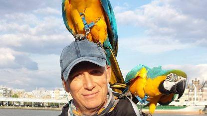 """Jager schiet afgerichte papegaai uit de lucht """"puur voor het plezier"""""""