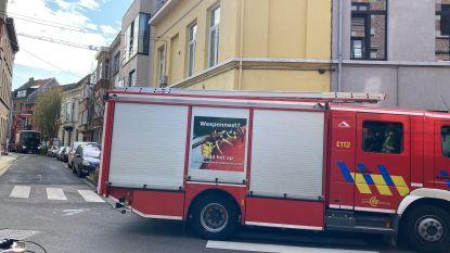 Bewoner laat reptiel op sterk water vallen: brandweer sluit Raas van Gaverestraat tijdelijk af