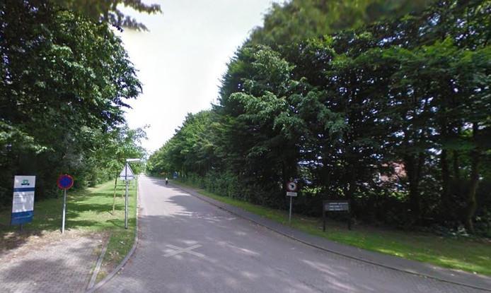 Park de Blauwe Bergen ligt ingeklemd tussen Nijenoord Allee, Wageningen Campus en de sterflats aan de Dijkgraaf en Bornsesteeg.