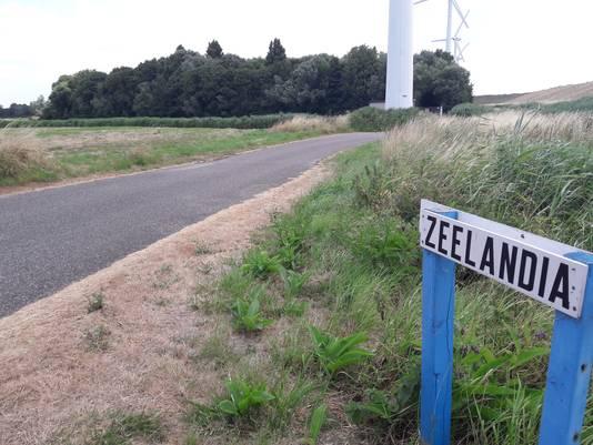 Camping De Belt van naturistenvereniging Zeelandia ligt in het bos op de voormalige vuilstort.