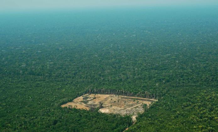 Deze foto uit 2017 toont de ontbossing van het westelijke Amazonegebied.