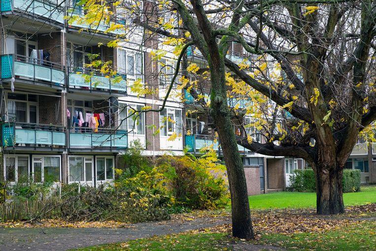 Een galerij flats in de wijk Schiebroek Zuid in Rotterdam. Beeld Hollandse Hoogte