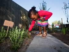 Aanleg van groene schoolpleinen in Westland is onzeker