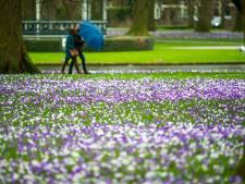 Herfstwandeling op lentedag in de winter in Apeldoorn