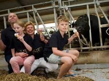 Burense melkveehouder wordt steeds meer ijscoboer