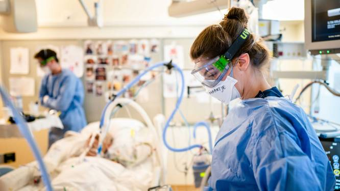 Nederlands onderzoek: coronavirus veroorzaakt schade aan middenrif bij ernstig zieken