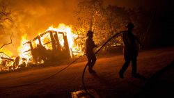 Alles wat je moet weten over bosbranden