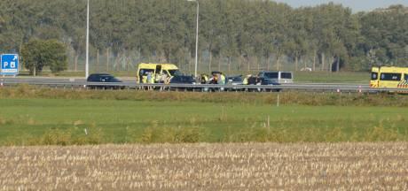 Ongeluk op A59 bij Waalwijk, file richting Efteling weer opgelost