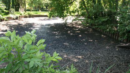 """Parkvijver van Kapellen staat droog: """"Elke druppel regen is welkom"""""""
