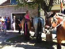 De leukste festivals en evenementen in Middelburg