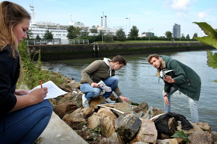 In het kader van de grote klimaatcheck in Rotterdam doen studenten watermanagement aan de Hogeschool Rotterdam Michelle ter Haar, Yves Bonné en Arnoud Klok onderzoek.