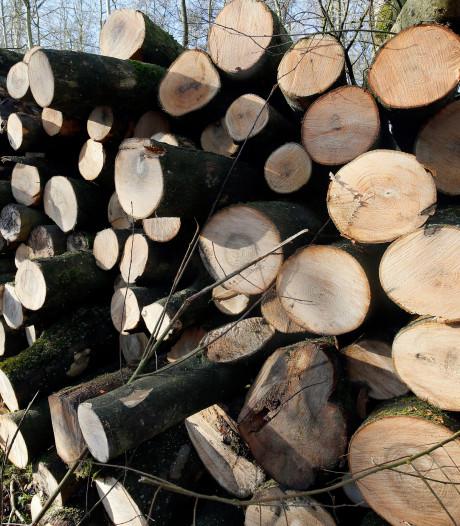 Provincie kapt bomen in Houten, Bunnik en Nieuwegein