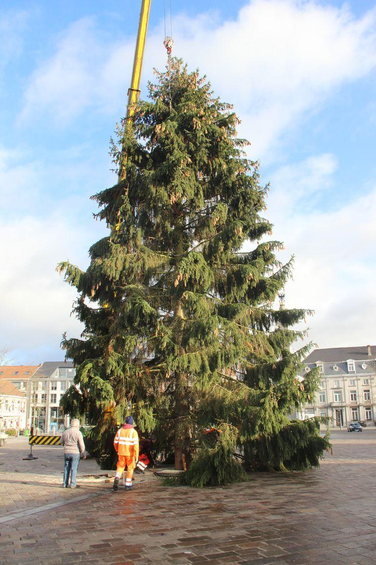 Een kerstboom van 18,5 meter prijkt op de Grote Markt in Ronse.
