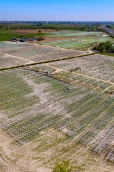Kan een foutje bij Belgische windmolens het einde van groot zonnepark bij Brummen betekenen?