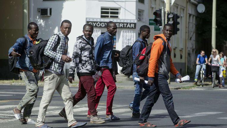 Afrikaanse migranten in het Hongaarse plaatsje Szeged. Beeld afp