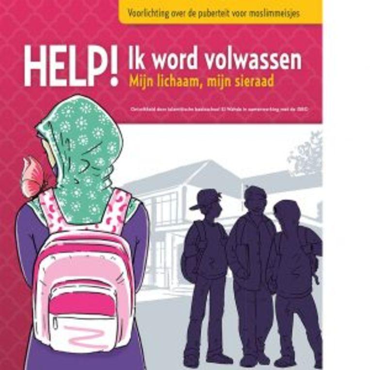 Een van de Islamitische boekjes voor adolescenten. Beeld ISBO