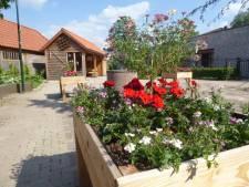 Vivent wil nieuwe naam voor woonzorgcentrum in Den Dungen