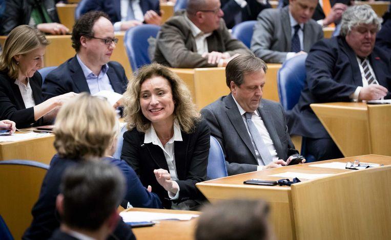 Vera Bergkamp (D66) tijdens de stemming in de Tweede Kamer voor de wietwet. Beeld anp