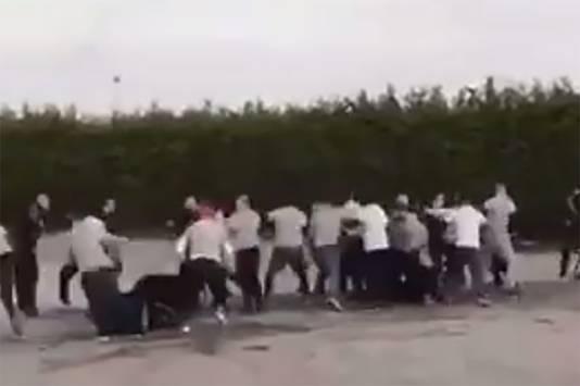 Vechtende hooligans van Feyenoord en AZ.