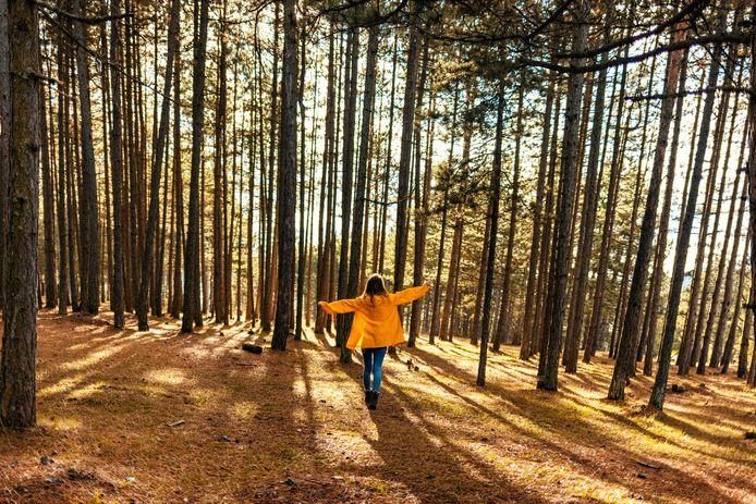 """""""Uren en uren achter je scherm vertoeven wissel je best af door even een park of, liever nog, een bos in te gaan"""", zegt Heidi Gelders. """"Zelfs een korte uitstap geeft al veel voldoening. Je ontspant even en kan vrijer ademen. """""""
