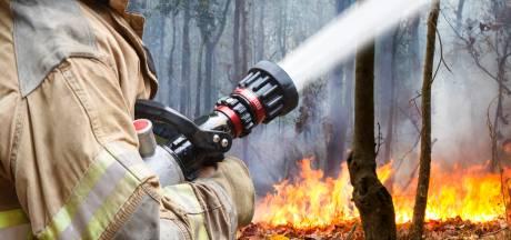 Doesburgse brandweer doet het niet zó slecht