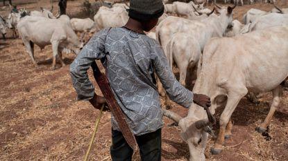 Minstens dertig doden bij religieus geweld in Nigeria