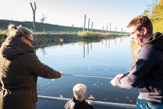 Waterschap Scheldestromen kapte in november aan de Schouwse Dijk 38 populieren. Voor 11 exemplaren bleef het bij drastisch terugsnoeien, omdat vleermuizen hun verblijfplaats hebben in de stammen. Het waterschap plant, waarschijnlijk  komend voorjaar, in totaal 34 populieren terug.