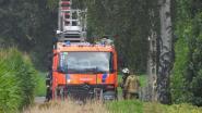 Elektriciteitskabel vat vuur: buurt even zonder stroom