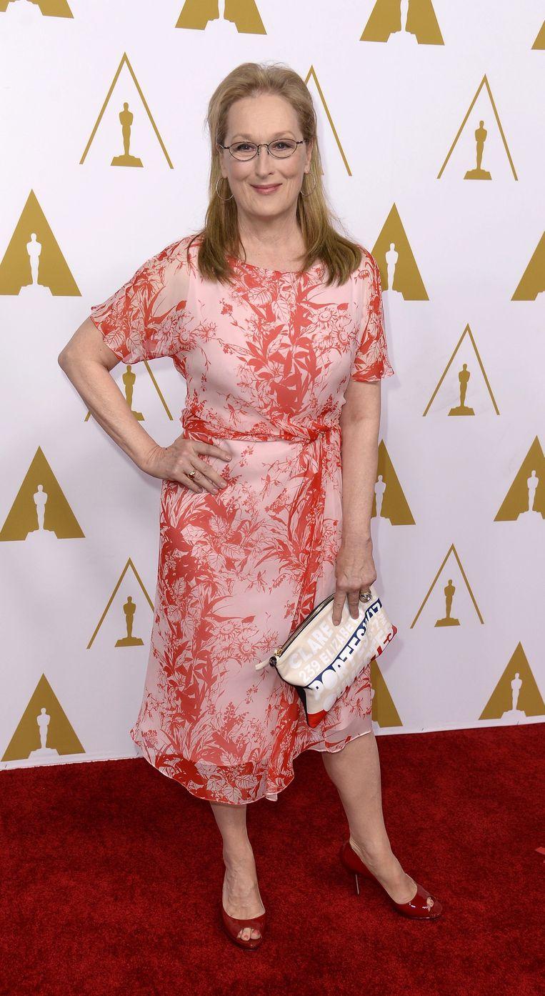 Meryl Streep begon dit jaar een fonds voor vrouwelijke scenaristen boven de 40. Beeld anp