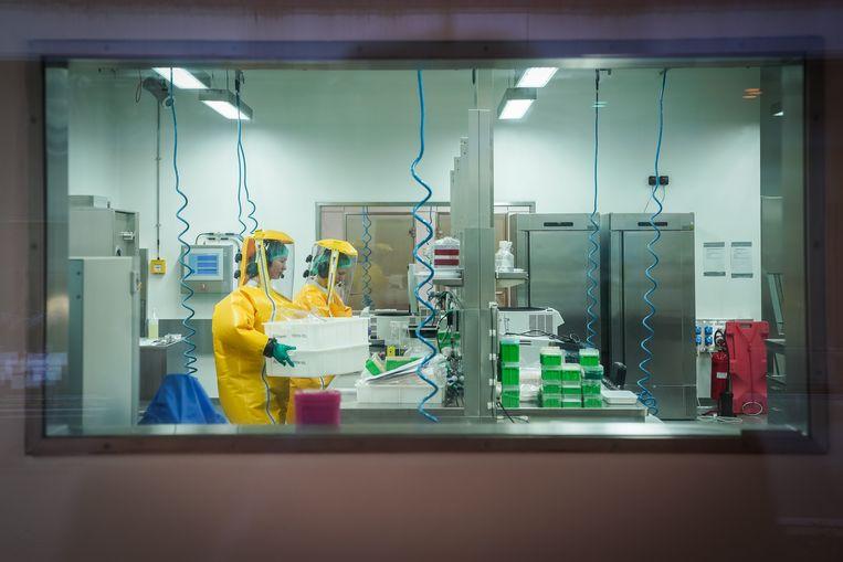 Wetenschappers werken in een lab van het Friedrich-Loeffler Instituut in Duitsland aan de vraag of door klimaatverandering tropische ziektes via muggen in Duitsland kunnen belanden. Beeld Getty Images