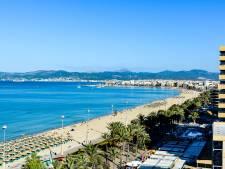 Britten opgepakt nadat ze kinderen achterlaten om zich lam te drinken op Mallorca