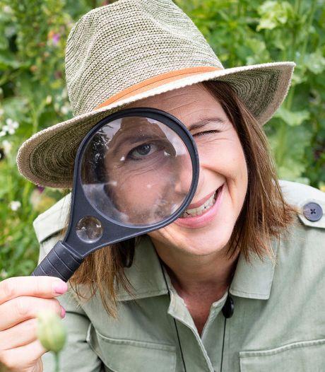 Safari in je eigen tuin: 'Er fladderen zo'n zes soorten vlinders rond'