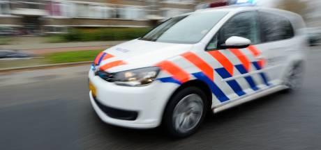 Man vernielt politieauto en mishandelt agenten bij aanhouding