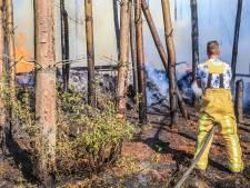 Bosbrand bij Aarlesche Visvijver in Bakel snel onder controle: 'We staan op scherp met deze droogte'