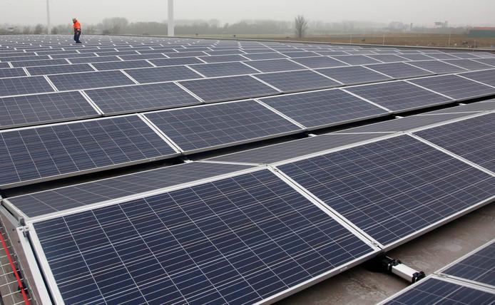 Terneuzen liet eerder ruim 700 zonnepanelen installeren op een eigen gebouw in de Koegorspolder.