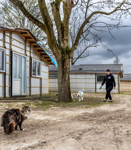 Camping De Berekuil voorlopig dicht voor toeristen, maar bouw van 80 chalets en restaurant gaat door