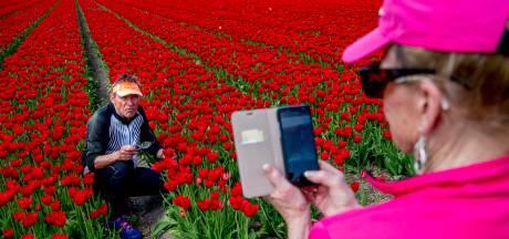 'Te veel toeristen? Welnee, er is nog volop ruimte voor groei'
